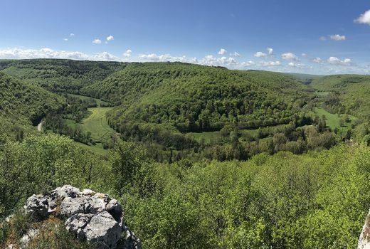 Panorama - Forêts Seine et Suzon