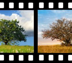 Montage 4 saisons